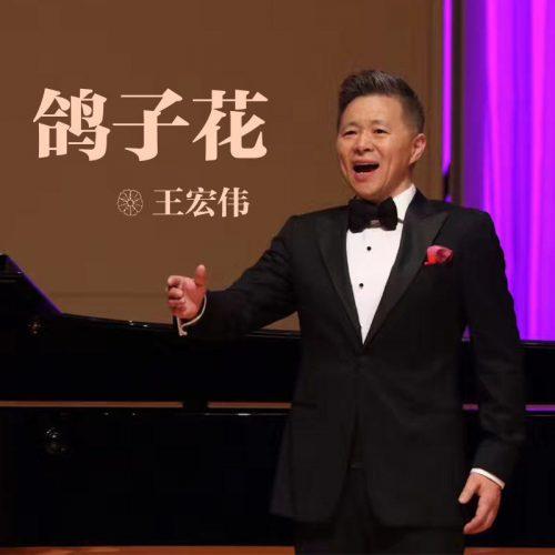 鸽子花歌词-王宏伟