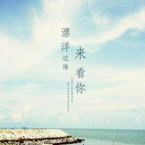 漂洋过海来看你歌词-漂洋过海来看你LRC歌词-李宗盛