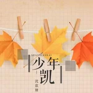 少年凯歌词-少年凯LRC歌词-沈歆妍