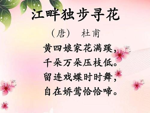 江畔独步寻花歌词-华语群星