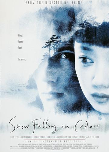 《落在香杉树的雪花》电影好看吗?落在香杉树的雪花影评及简介