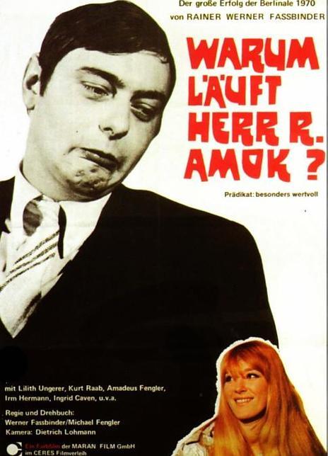 《R先生为什么疯狂地杀人?》电影好看吗?R先生为什么疯狂地杀人?影评及简介