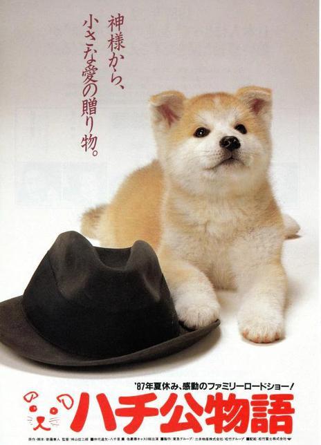 《忠犬八公物语》电影好看吗?忠犬八公物语影评及简介