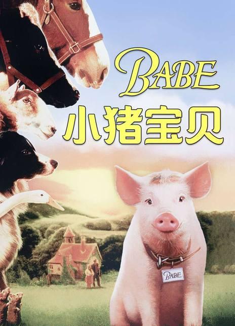 《小猪宝贝》电影好看吗?小猪宝贝影评及简介