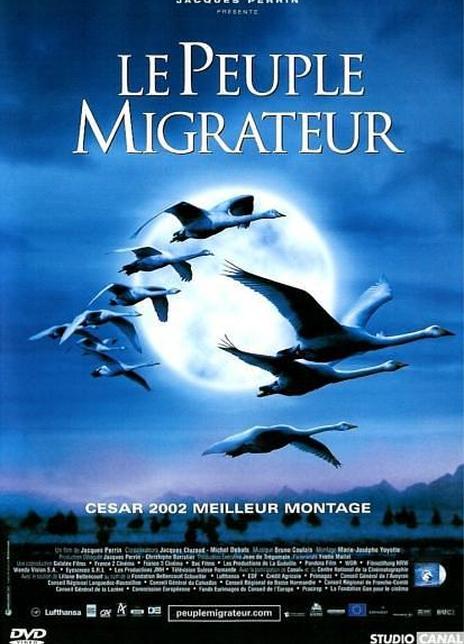 《迁徙的鸟》电影好看吗?迁徙的鸟影评及简介